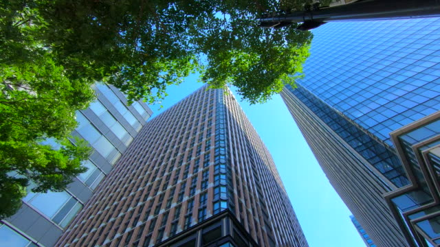 business towers and green leaves - edificio adibito a uffici video stock e b–roll