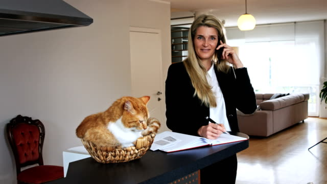 Business Woman Talking and Writing and a Cat in a Basket video