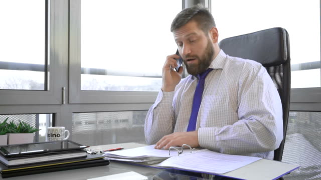 Businessman browsing document, in ring binder talking by smartphone, office video