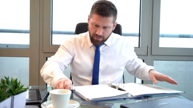 Businessman browsing documents, making notes in ring binder in office, portrait video