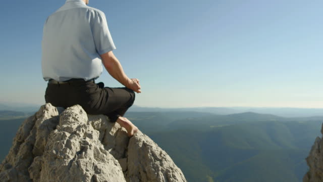 HD: Businessman Meditating In The Nature video