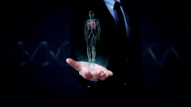 vídeos de stock e filmes b-roll de businessman open palm, rotating human cardiovascular system, blue x-ray light. - aorta