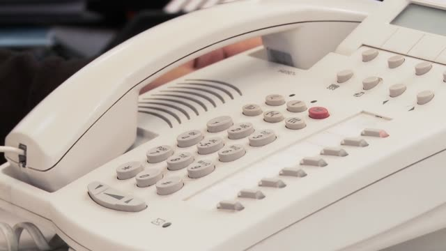 Businessman Picking Up The Phone In His Office. Close-Up. Businessman Picking Up The Phone In His Office. Close-Up. Full HD. telephone receiver stock videos & royalty-free footage