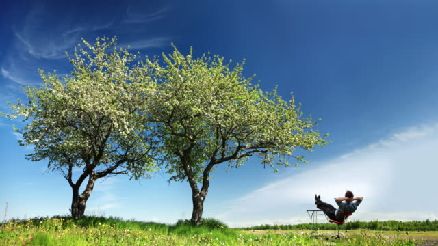 4K - Businessman Relax in Meadow, looking at lonely tree. video
