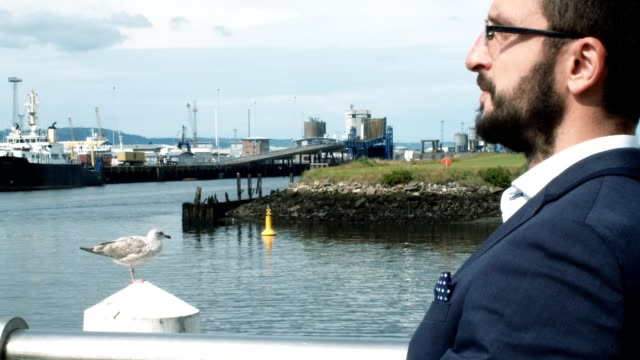Businessman Spending His Lunch Break At The Harbour, Next By A Seagull. video