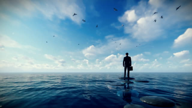 businessman with briefcase standing on a pebble on a lake surrounded by seagulls, zoom in - balance graphics video stock e b–roll