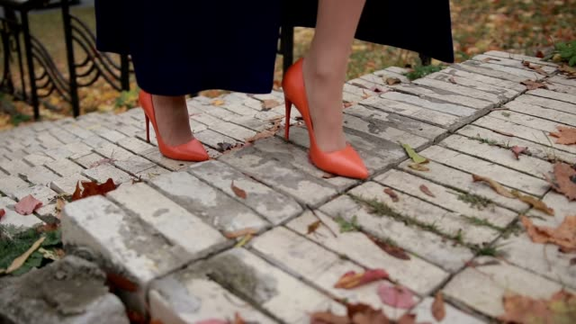 Businesswoman climbing the stairs in autumn video
