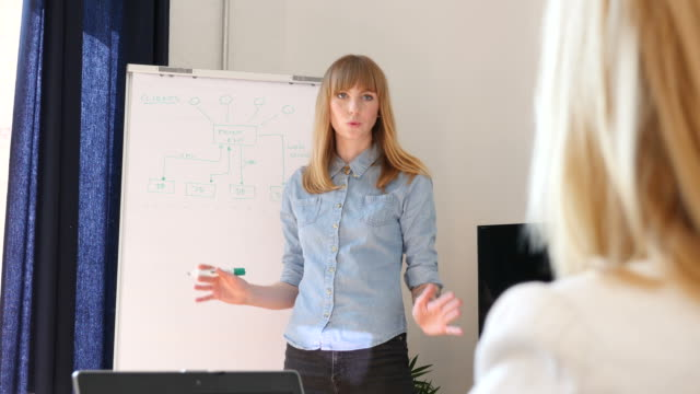 Businesswoman Explaining Flow Chart To Colleague video