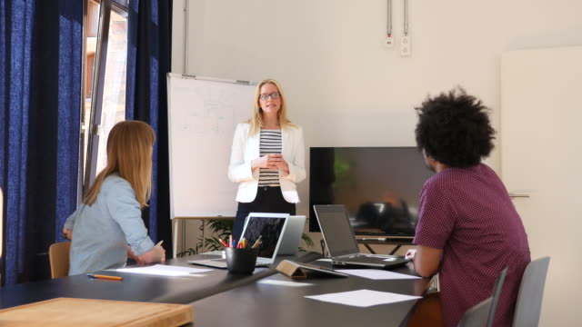 Businesswoman Giving Presentation To Colleagues video