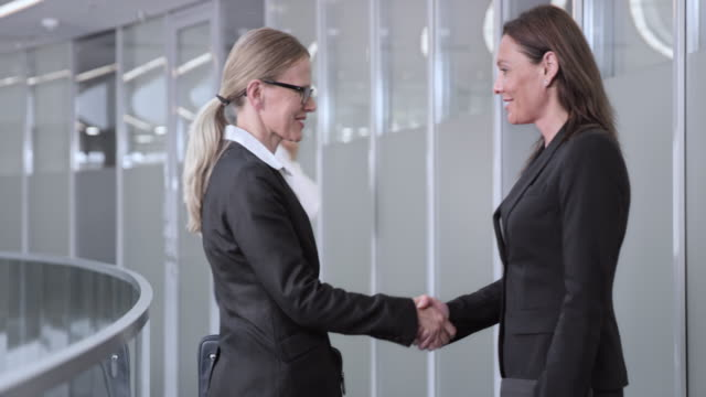 DS Businesswoman meeting her female colleague in the corporate hallway video