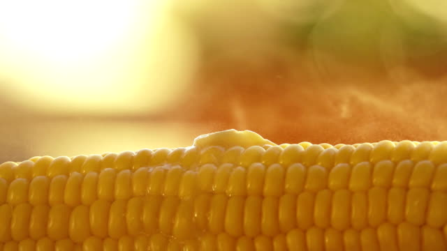 Butter melting on hot freshly boiled corn video