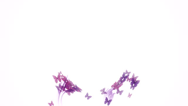 Butterfly background logo video