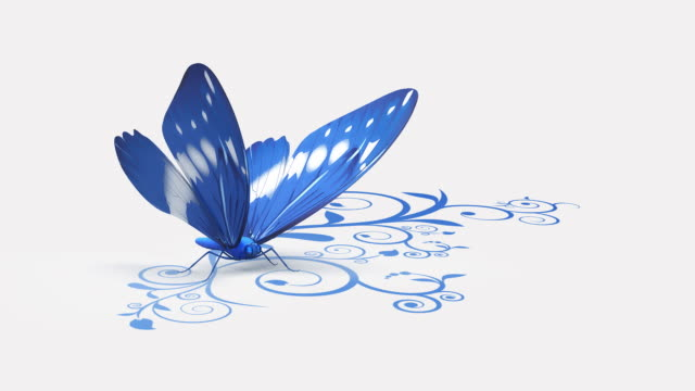 Butterfly on ornate background.Blue video