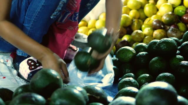 vídeos de stock e filmes b-roll de buying avocado at flooring market - abacate