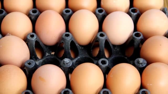 Buying eggs. video