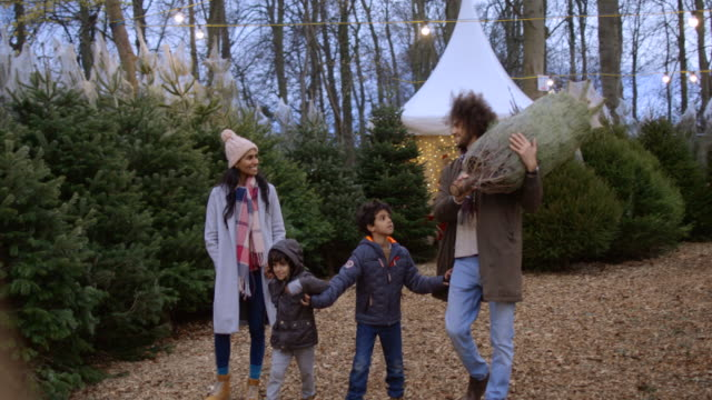 Buying Their Christmas Tree for Home A static, wide shot of a multi-ethnic family walking through a Christmas tree farm together in Newcastle-Upon-Tyne. The mother and two boys are all holding hands while the father is carrying a wrapped up Christmas tree over his shoulder. They are taking it home after buying it. christmas tree stock videos & royalty-free footage