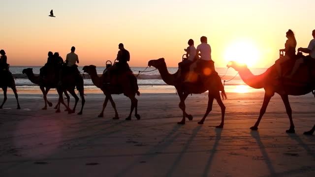 cable beach, broome, western australia. - western australia stock videos & royalty-free footage