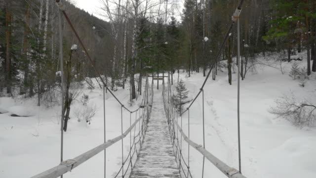 つり橋 - アルタイ自然保護区点の映像素材/bロール