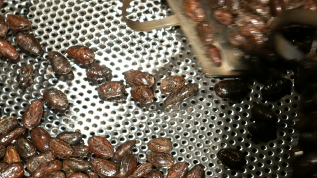 Cacao beans in roasting machine Cacao beans in roasting machine roasted stock videos & royalty-free footage