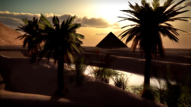 Cairo Egypt Pyramid Desert African Sunset Saudi Arabia Oasis Palms Desert oasis in Egypt-like environment. Or maybe Vegas in 100 years? Gentle breeze and floating lily pads with time-lapse sky. Loops well with a fade transition. Also edits well with the moonlight night version of this scene with a fade... great for themes of travel, culture, adventure, history, destinations, politics. desert oasis stock videos & royalty-free footage