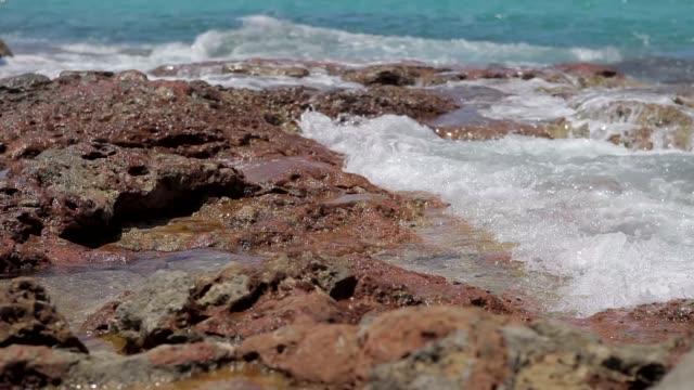 cala conta ibiza beach, wet turquoise water rocks in ibiza - formaggio comté video stock e b–roll