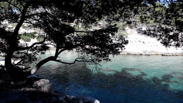 stockvideo's en b-roll-footage met calanques of cassis, near marseillle (france) - marseille