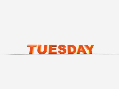 calendar week (pal 25p) - helgaktivitet bildbanksvideor och videomaterial från bakom kulisserna