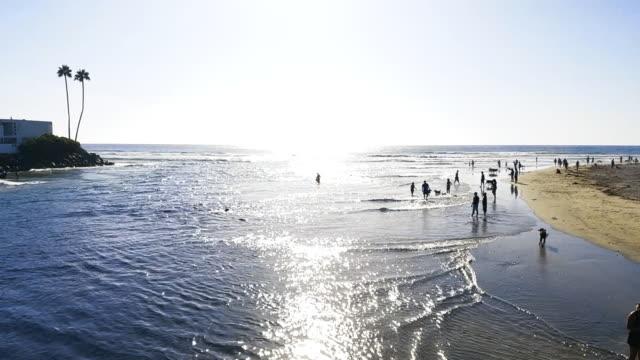 California Dog Beach video
