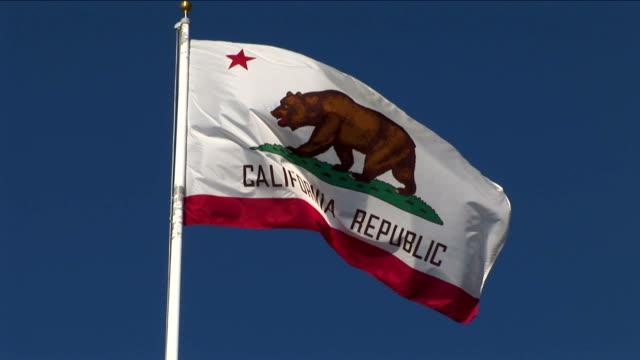 California State Flag video