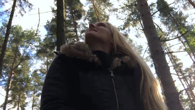 Calm & joy in forest video