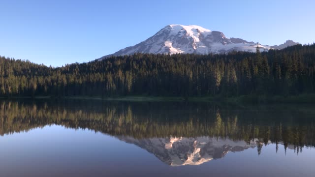 calm summer morning view of mt rainier and reflection lake