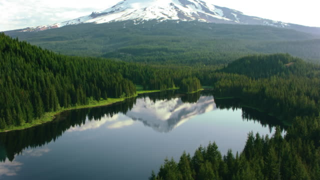 AERIAL Calm surface of a lake in the forest reflecting the beautiful Mount Hood in the background