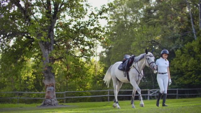 lugn promenad med favorit häst - hästhoppning bildbanksvideor och videomaterial från bakom kulisserna