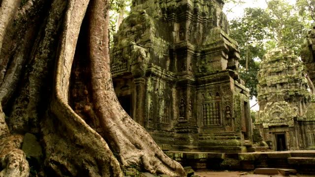 Cambodian UNESCO World Heritage Site Ta Prohm temple video HD
