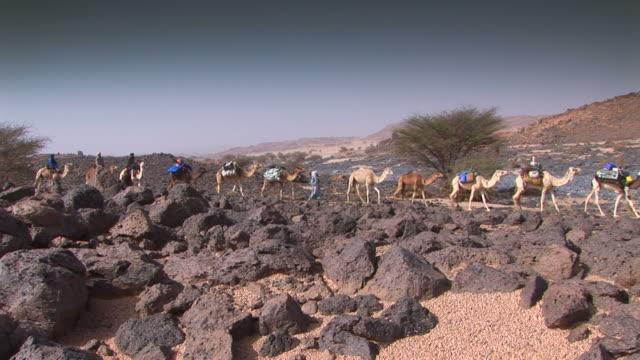 キャメルの caravan 砂漠 - 動物に乗る点の映像素材/bロール
