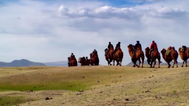 Camel caravan. video