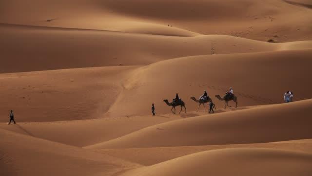 kamel karavan med turister i sanddyner - egyptisk kultur bildbanksvideor och videomaterial från bakom kulisserna