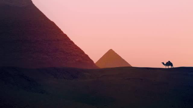 vídeos de stock e filmes b-roll de passeios de camelo perto da pirâmide - dia de reis