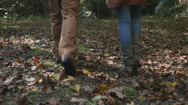 kamera följer en man och kvinna som går med sin hund i skogen - hund skog bildbanksvideor och videomaterial från bakom kulisserna