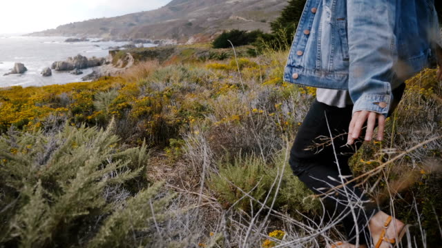 Camera follows young happy woman walking among yellow flowers and dry plants to amazing rocks on Big Sur ocean coastline video