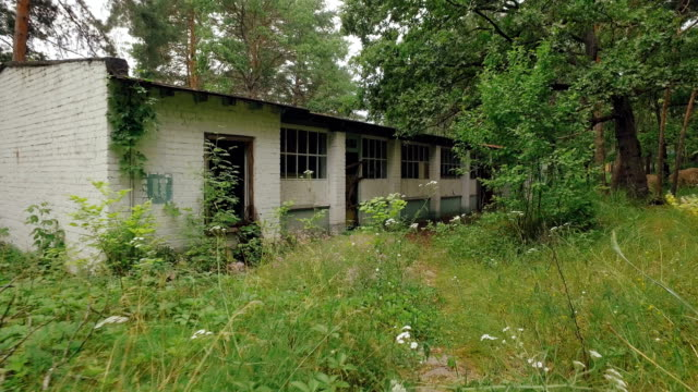 camera is approaching to abandoned house in forest in summer day, broken doors and windows video