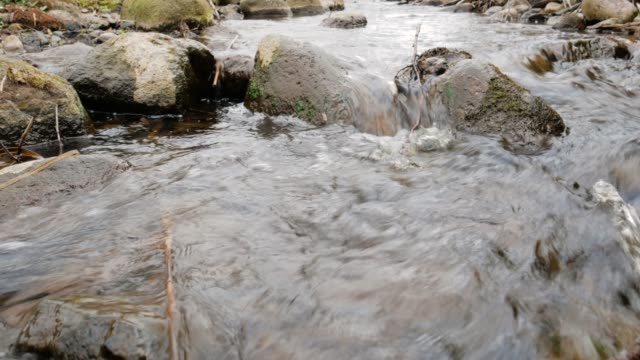 Camera is moving over clean fresh water of a forest stream running over mossy rocks.