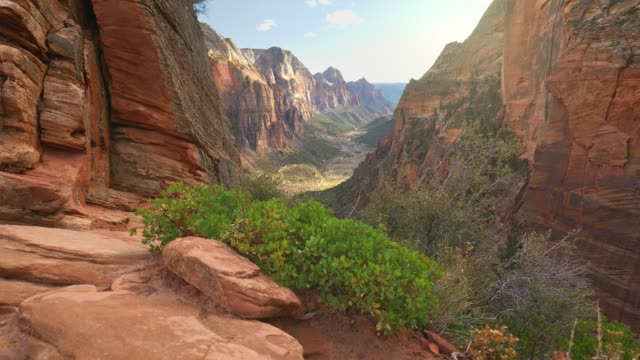 Camera moves over cliff overlooking the canyon. Zion National Park, Utah, USA