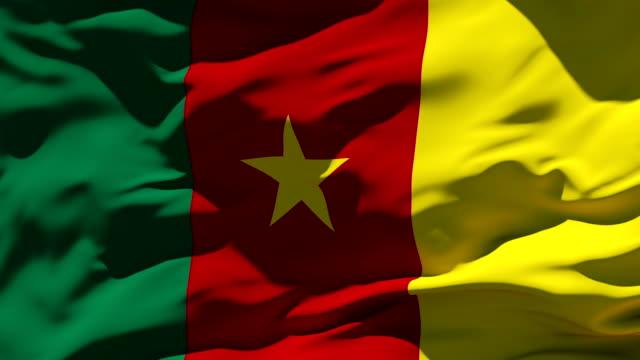 Kamerunische Flagge – Video
