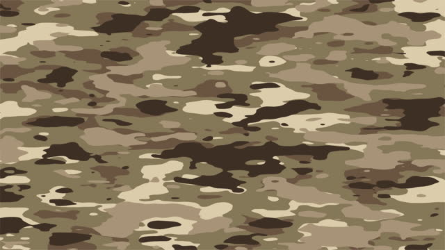 Camo loop background, desert colors - HD/NTSC/PAL An evolving camo pattern that loops seamlessly. HD, NTSC-D1 16x9, PAL 16x9, Big Web and Small Web sizes. Progressive frames. Jungle colors version: military uniform stock videos & royalty-free footage