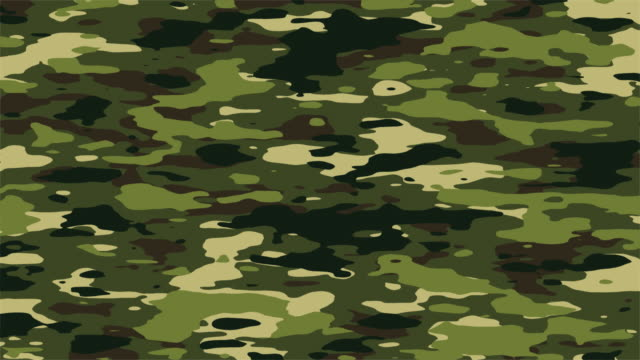 Camo loop background, jungle colors - HD/NTSC/PAL An evolving camo pattern that loops seamlessly. Progressive frames. Options of HD1080, NTSC-D1 16x9, PAL 16x9, Big Web and Small Web sizes. Desert colors version: camouflage clothing stock videos & royalty-free footage