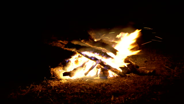 바람이 부는 날에 불 캠프. - 틸트 스톡 비디오 및 b-롤 화면