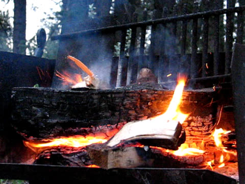 - camp fire  - wildnisgebiets name stock-videos und b-roll-filmmaterial
