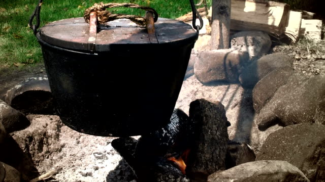 Campfire Cooking video