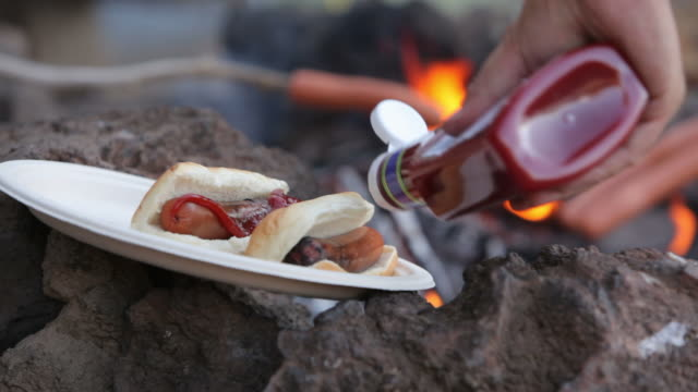 Campfire hot dogs video